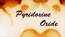 Pyridoxine Oxide - No One Has Yea Called At All (Underground Alien Rap)
