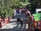 ENCIERRO LAS ROZAS 2008 (01/10/2008)
