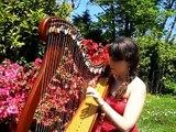 Bring me to life - Evanescence- harpe/harp