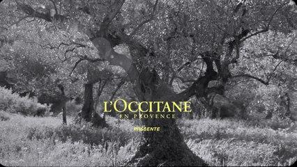 La nouvelle Eau de Toilette Cédrat pour Homme - L'Occitane en Provence