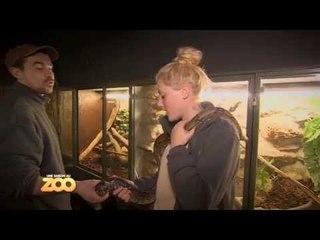 Une saison au zoo - Episode 2 (Saison 3)