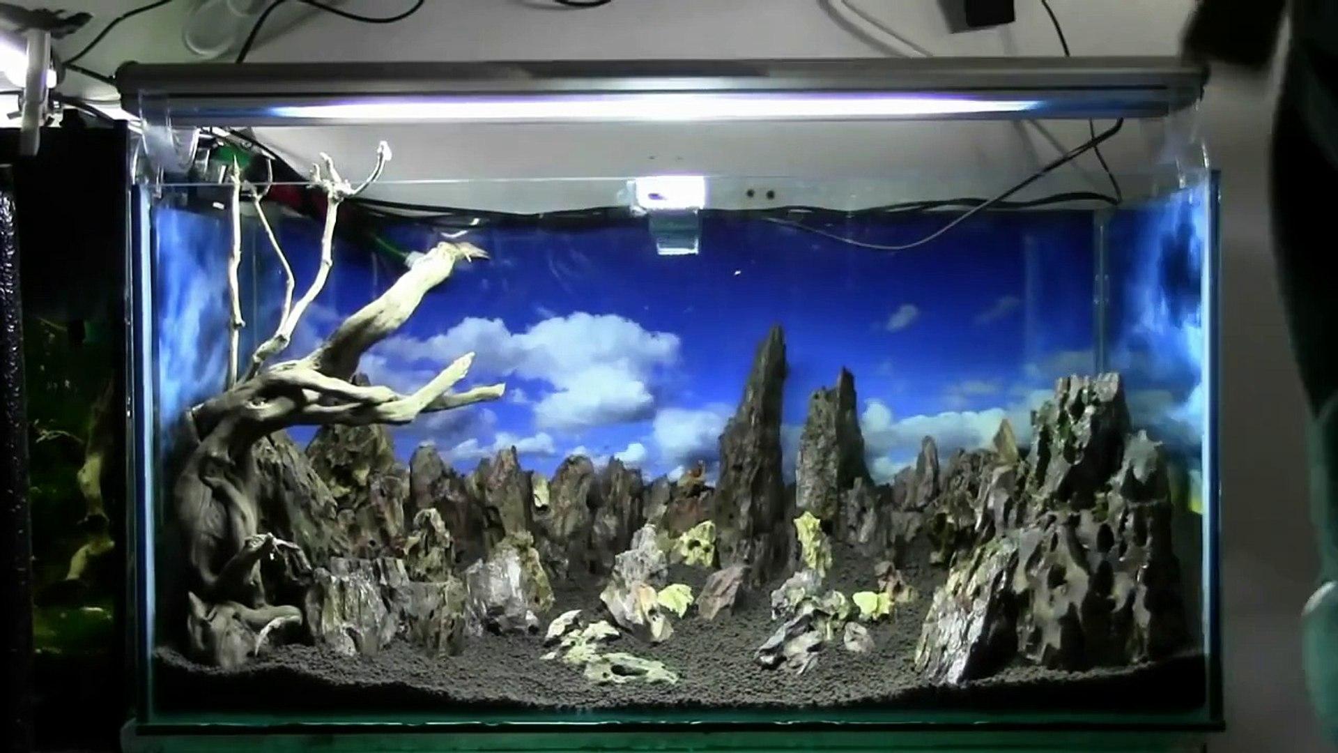 Ivory Tower Aquascaping Aquarium Setup Step By Step Video Dailymotion