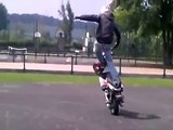 snykeurs-stunt ( stunt wheel team ) stunt scoot