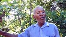 Les impacts de la déforestation à Madagascar   changements climatique et sécheresse