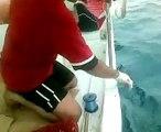 صيد الناجل بالقنفذه من الصياد ابو على على بوت قرون