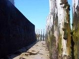 Les Grandes Marées à Saint-Malo : Les plus grandes d'europe