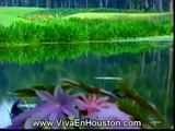 Real Estate en Houston. Casas. Lotes. Terrenos. Casas en Houston