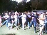 "CAMP HARMONY Dance Flash Mob :: ""I Gotta Feeling"" by The Black Eyed Peas"