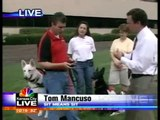 Sit Means Sit Dog Training of Kansas City on TV
