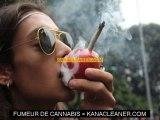 Les nouveaux effets du cannabis
