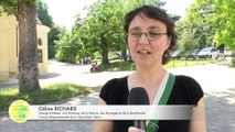 Les Observ'acteurs au collège de Seine-Saint-Denis en congrès au Muséum national d'Histoire naturelle