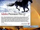 How to Use Adobe Premiere Pro : Using Frames & Fields in Adobe Premiere