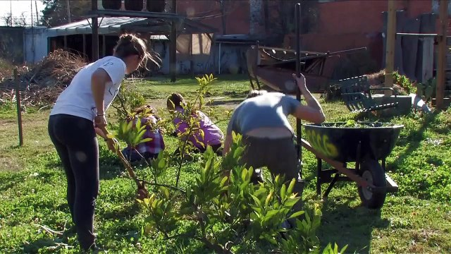 Why Community Gardening is Important -- Centenary College Community Garden