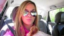 Vlog: Work, Car Vlogging, Abs, Sunshine