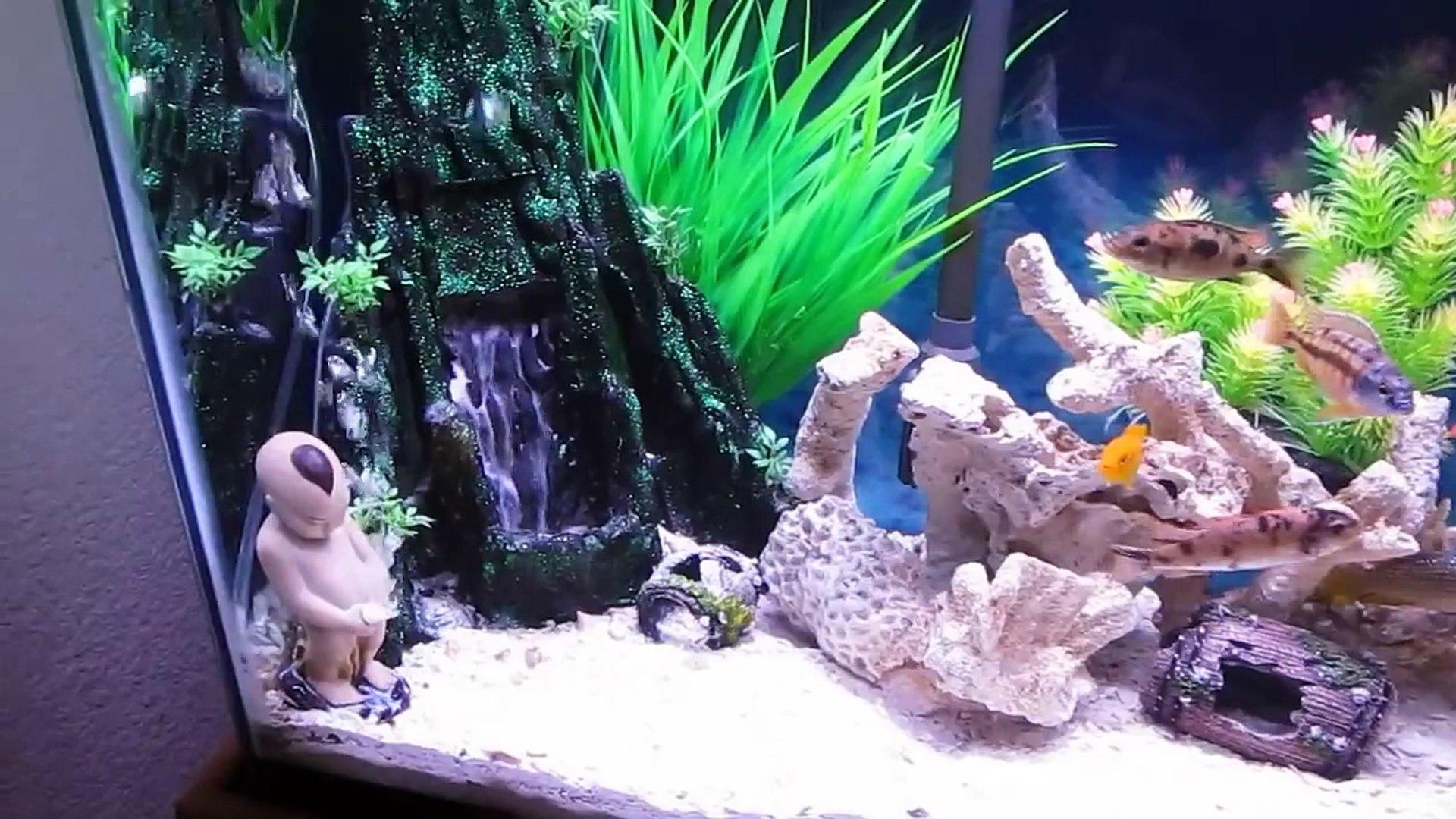 Our Sand Waterfall Aquarium Video Dailymotion