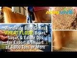 American Wholesale Wheat Flour Suppliers, Wheat Flour Suppliers, Wheat Flour Suppliers, Wheat Flour Suppliers, Wheat Flo