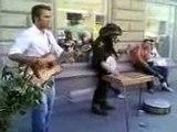 Cesis, Latvia,  cesis  city celebrate, latvian live music
