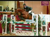 3 Days Grace-Pain Horses Jumping & Dressage Pictures
