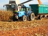Cosecha de maíz 2010 Claas, Landini y Ebro