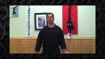 Ninjutsu Defense Against Multiple Attackers - Bujinkan Training