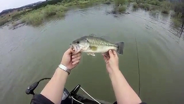 Spring bass fishing in Southern Oregon