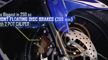 Review Yamaha R25 (Revs the Engine Hear it Roars Feel the Power YZF R25)