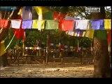 Divine 'Buddha Boy' Palden Dorje - IV