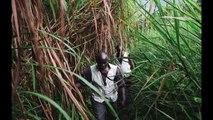LE PAYS AUX MILLES MONTAGNES - Vaccination dans l'Est de la République démocratique du Congo