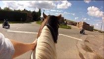 travailler son cheval en balade