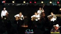 "DI MAURO SWING "" MINOR SWING "" FESTIVAL JAZZ MANOUCHE CITE DU TRAIN A MULHOUSE ALSACE JUIN 2015"