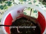 Récupération recyclage mangeoires d'oiseaux facile à faire
