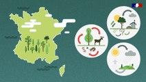 Vers l'économie circulaire de la filière bois