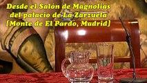 Operación del rey Juan Carlos 2013   Errores de los periodistas en Rueda de prensa en La Zarzuela