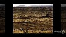 UFO reptilian skeleton NASA MARS Curiosity Rover REAL image  anomalies anomaly UFO 2013