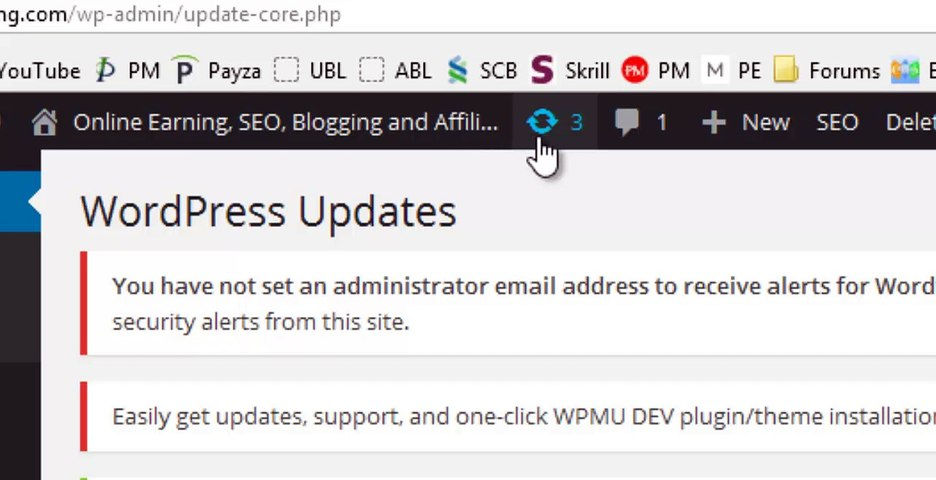 Why and How to update WordPress Plugins