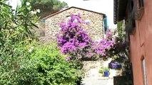 France Languedoc-Roussillon Collioure station Catalane des artistes peintres