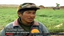 Contingencia en la agricultura del altiplano en Bolivia