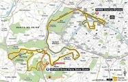 Tour 2015: Etape 21: Sèvres - Grand Paris Seine Ouest / Paris Champs-Élysées