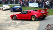 LOUD DeTomaso Pantera GT5 - Revs, Accelerations, Burnouts & Start-ups [HD]