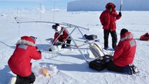 Unlocking a Sea Ice Secret: Bromide and Other Impurities in Snow and Sea Ice