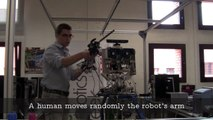 On Using Guided Motor Primitives to Execute Continuous Goal-Directed Actions