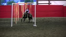 2011 Andalusian Horse Show & Fiesta.mov