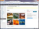 Showcase Gallery WordPress Plugin