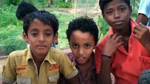 Projects Abroad India: Volunteer Conservation & Environment Project