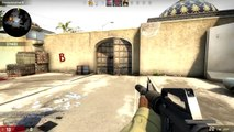 Counter Strike Global Offensive -  My Ears have Cancer!