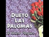 Dueto Las Palomas - Paloma Mentirosa.wmv