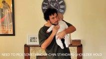 Ce papa explique comment bien porter un bébé - Trop marrant