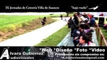 IX Jornadas Cetreria Suances 2012