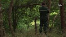 Les domaines forestiers sous haute surveillance