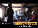 Minibike Minimoto Race  Pocketbike  Riding-Bulls